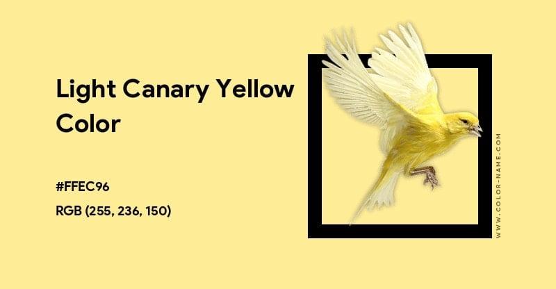 Light Canary Yellow